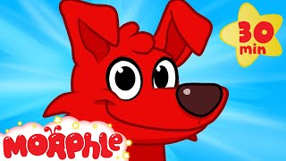 Download My Magic Puppy Training - My Magic Pet Morphle dog videos for kids Video