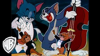 Download 🔴 WATCH NOW! BEST CLASSIC TOM & JERRY MUSICAL MOMENTS | WB KIDS Video