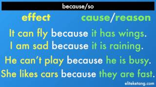 Download Because/So... Cause & Effect! Video