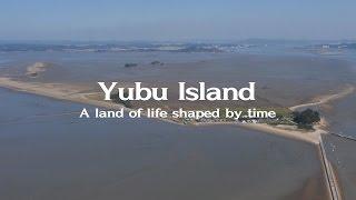 Download Yubudo (Yubu) Island, Guem Estuary - A shorebird haven in the Yellow Sea Video