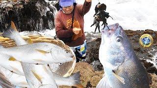 Download Pescador con Mucha SUERTE Llena su CESTA con PESCADOS Pescando con Puro CANGREJO Video