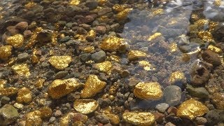 Download There's So Much Gold, That it's Impossible To Collect. Video