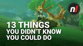 Download 13 Things You Didn't Know You Could Do in The Legend of Zelda: Breath of the Wild Video