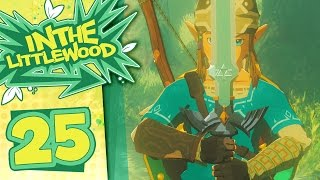 Download The Legend Of Zelda: Breath Of The Wild - Part 25 - Master Sword Video