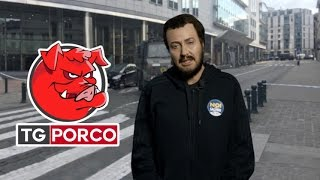 Download Tg Porco, Sabina Guzzanti - Salvini: ″Ero venuto a Bruxelles per un party tecno a cui tenevo″ Video