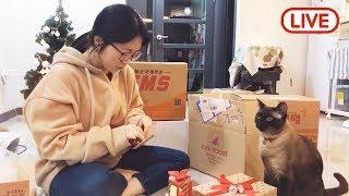 Download [17.12.16 라이브] 친구와 함께😊 고양이들에게 보내주신 선물개봉식 Video