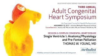 Download Single Ventricle 1: Anatomy/Physiology and Pre-Fontan Palliation (THOMAS W. YOUNG, MD) Video