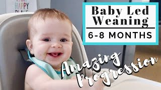 Download 60 Days of Baby Led Weaning Progression   Starting Solid Foods   LINDSEYDELIGHT Video