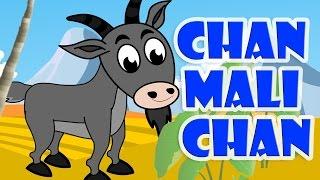 Download Lagu Kanak Kanak Melayu Malaysia | Chan Mali Chan - Malaysian Folk Song Video