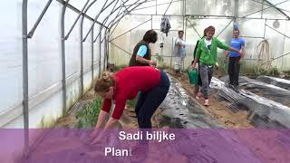 Download Plastenik u 4 minute sjajna edukacija za početnike Greenhouse in 4 minutes Great Video