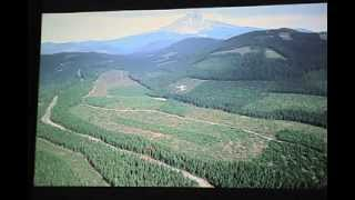 Download Pacific Northwest Logging Impacts Video
