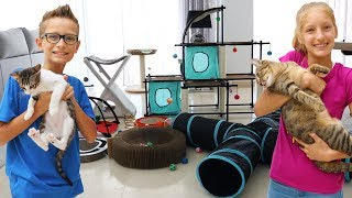 Download Testing Cat Toys on our Cats!!!! Video