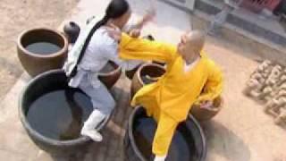 Download Wu Jing...Shaolin Based Video