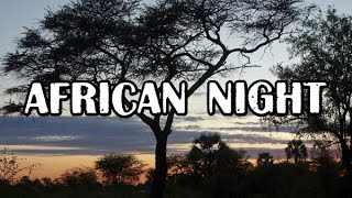 Download AFRICAN NIGHT SOUNDS, Namibia, near river Ocavango/Ночные звуки Африки Video
