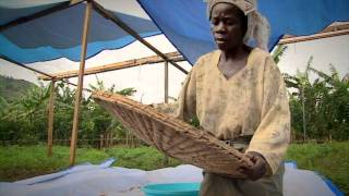 Download Gender and rural microfinance: A learning route in Uganda Video