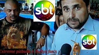 Download SBT cobrindo o evento extreme pitbulls e Bullys fan's Video