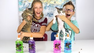 Download Our Cats Pick Our Slime Ingredients Challenge!!! Video