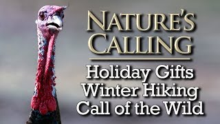Download Nature's Calling - Holiday Gifts, Winter Hiking, and Wildlife Calls (Dec 2015) Video