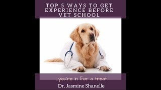 Download Top 5 ways to get Animal Experience before Vet School Video