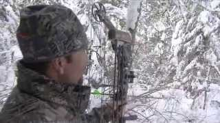 Download Hunting Mountain Lion with Bow in Idaho Video