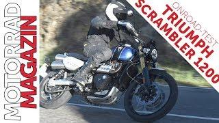 Download Triumph Scrambler 1200 Onroad-Test - Hält sie am Asphalt, was sie auf Schotter verspricht? Video