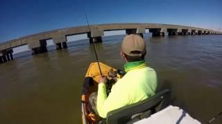 Download Lake Pontchartrain Speckled Trout 01-08-2017 Video