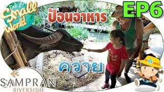 Download เด็กจิ๋วป้อนอาหารควาย (หมู่บ้านไทย สวนสามพราน6) Video