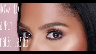 Download How to: Apply False Lashes | MakeupShayla Video