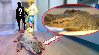 Download LIVE ALLIGATOR PRANK ON NEW ROOMMATE! Video
