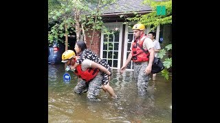 Download Dramatic Rescues Following Hurricane Harvey Video