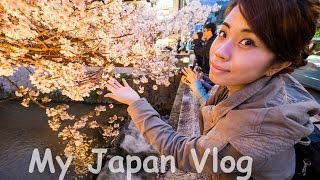 Download My Japan Travel Vlog 2016 [Spring] Cherry Blossoms Video
