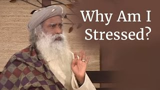 Download Why Am I Stressed? - Sadhguru on Stress Video