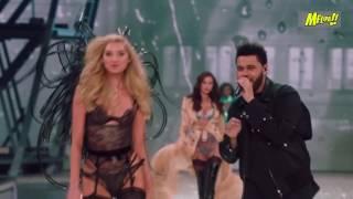 Download Los 7 mejores momentos del desfile de Victoria's Secret Video