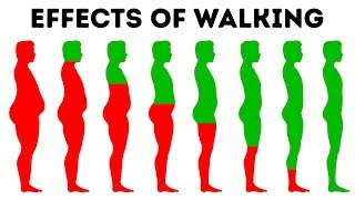 Download What Will Happen to Your Body If You Walk Every Day Video