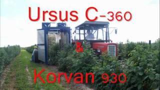 Download Zbiór malin 2010 Ursus C-360 & Korvan 930 Video