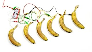 Download You've Never Seen Bananas Do This... Video