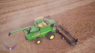 Download 1900 Acre Field of Kentucky Soybeans Video