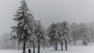 Download A day in Cyprus.. From Warm to Cold. Sea or Snow? 1 hour distance Video