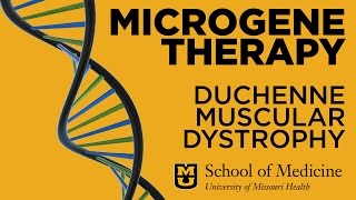Download Duchenne Muscular Dystrophy - Virus Delivers Microgene Therapy Video