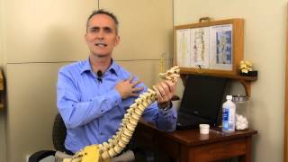 Download Chiropractic: Why we use Network Spinal Analysis at our Office Video