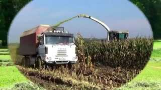 Download TATRA AGRO 815 , 148 a PHOENIX AGROTRUCK Video