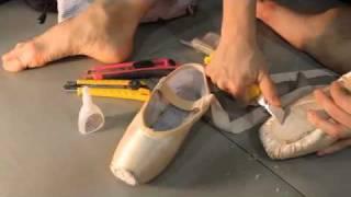 Download The Black Swan's Feet Video