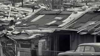 Download 1967, Les bidonvilles de Nanterre Video