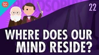 Download Where Does Your Mind Reside?: Crash Course Philosophy #22 Video