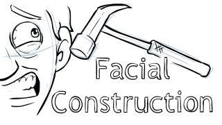 Download How to draw - Facial Construction Video