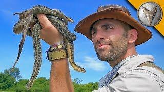 Download Return to Snake Island! Video