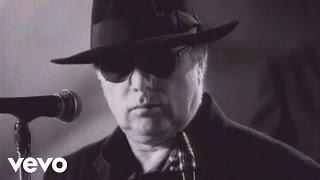 Download Van Morrison - Days Like This Video
