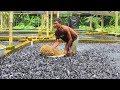 Download Những Trại Cá Có CÁ NHIỀU HƠN NƯỚC Trên Thế Giới Video
