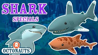 Download Octonauts - Undersea Missions to Discover Sharks | Shark Week Special Video