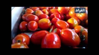Download تأكيداَ لما نشره ″انفراد″: فيديو كارثى يوثق مخالفات شركة هاينز العالمية للأغذية Video